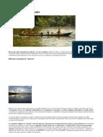 Índios e o meio ambiente.docx