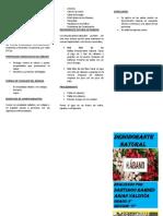 Reglamento de Elecciones de rabanito