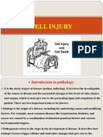 G Path-Cell Injury