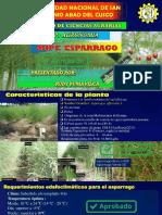 257841765 Expediente Tecnico Instalacion Palto