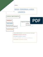 Area-limbica-cerebro.docx