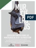 Jornadas-murciélagos-DEF-1_5655 variante