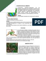 Conservacion Del Ambiente