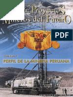 PROYECTOS MINEROS EN EL PERU.pdf
