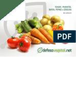 Batata,Cenoura, Pepino, Pimentão e Tomate