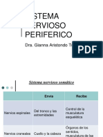 10. Clase Neurofisio II