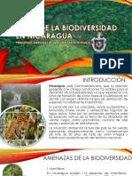 Crisis de La Biodiversidad en Nicaragua