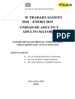 Plan de Trabajo Ag-st Adulto y Adulto Mayor