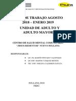 Plan de Trabajo Ag-st Adulto y Adulto Mayor