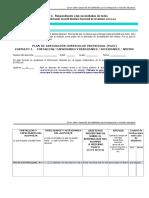 Formato1_PACI_M4.doc