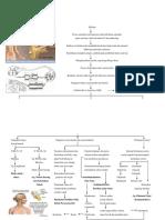 1.1 Patofisiologi GBS R 21 I