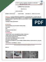 Informe de Labortorio 1 (1)