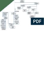 Mapas toma de decisiones.docx