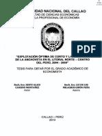 Kenyi Tesis Títuloprofesional 2013
