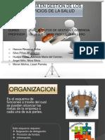 5 Exposicion Final-Organizacion