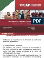 6. d.p. Del Trabajo - Proceso Ordinario