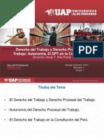 2. El Derecho Del Trabajo y Derecho Procesal Del Trabajo. Autonomia. El Derecho Del Trabajo en La Constitucion Del Peru.
