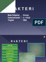 PPT BAKTERI 1