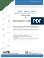 tesis_n0052_Lanzarini