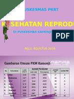 PKM PKRT
