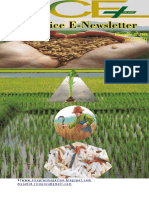 7th November,2018 Daily Global Regional Local Rice E-Newlsetter