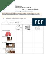 Evaluacion Animales Vertebrados