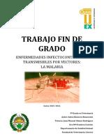 MALARIA.pdf