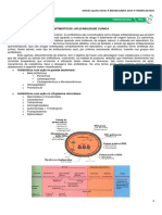 09 - Antibióticos - Abordagem Aplicada.pdf