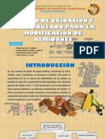 Expo Tecno II - Almidon