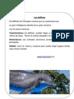 Articulo Informativo Sobre Delfines Tia Nicole