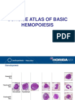 Concise Atlas