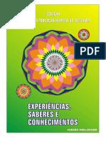 44587699-ACRIANCA-O-BRINCAR-E-AS-BRINCADEIRAS-VERSAO-PRELIMINAR (1).pdf