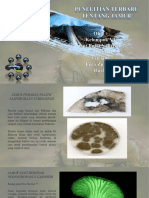 0041 Organic_PP Copy