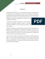 274098912-informe-de-conteo-de-traficoo.docx