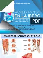 cicatrización  lesion del musculo.ppt