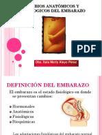 Capacitacion Fisiologia Del Embarzo