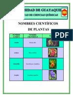 Nombres Científicos de Plantas(1)