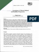 Challenges of Translating Tibetan Medica