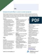 Managementul_performantei.pdf