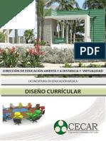 Diseno Curricular_diseno Curricular