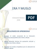 1.-_Cadera_y_muslo.pdf