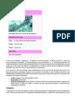 Hepatitis a y Antrax ( Triada Ecologica)