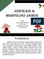 Mikro III Jamur