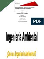 IMPACTOS AMBIENTALES. INGENIERÍA - ETICA - AMBIENTE