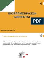 Biorremediacion Ambiental