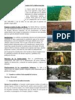 Cuáles Son Las Consecuencias de La Deforestación