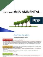 Economía-ambiental