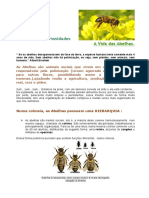 abelhas_curios1.pdf