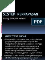 ppt BAB 7 sistem pernapasan.pptx
