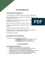PHYLUMS Phylum Anélidos